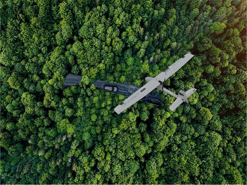 海南森林资源调查